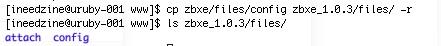 copy_config_files.jpg